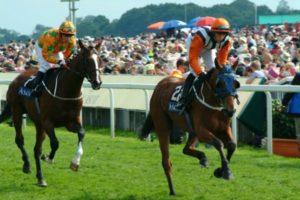 Horse Racing Warwick Stratford and Cheltenham